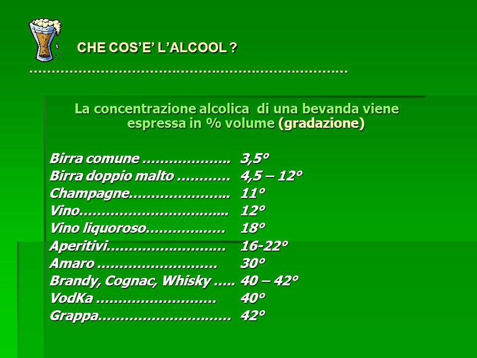 CHE COS'E' L'ALCOOL .……………………………………………………………… CHE COS'E' L'ALCOOL .