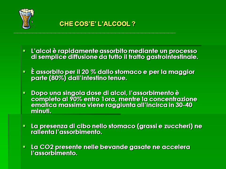 CHE COS'E' L'ALCOOL .………………………………………………………………………………………………………………… CHE COS'E' L'ALCOOL .