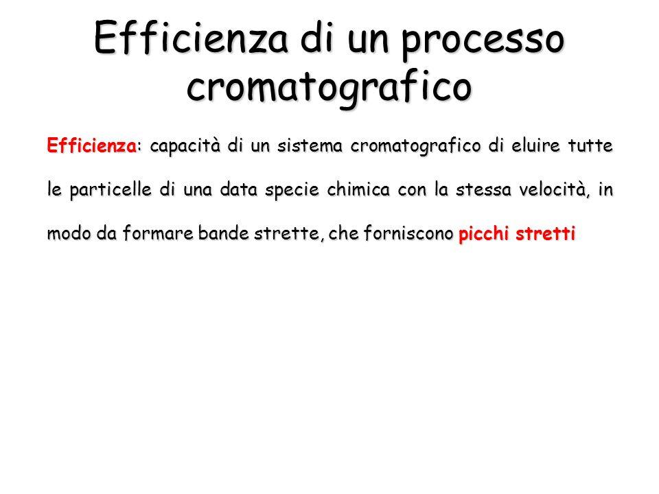 Efficienza di un processo cromatografico Efficienza: capacità di un sistema cromatografico di eluire tutte le particelle di una data specie chimica co