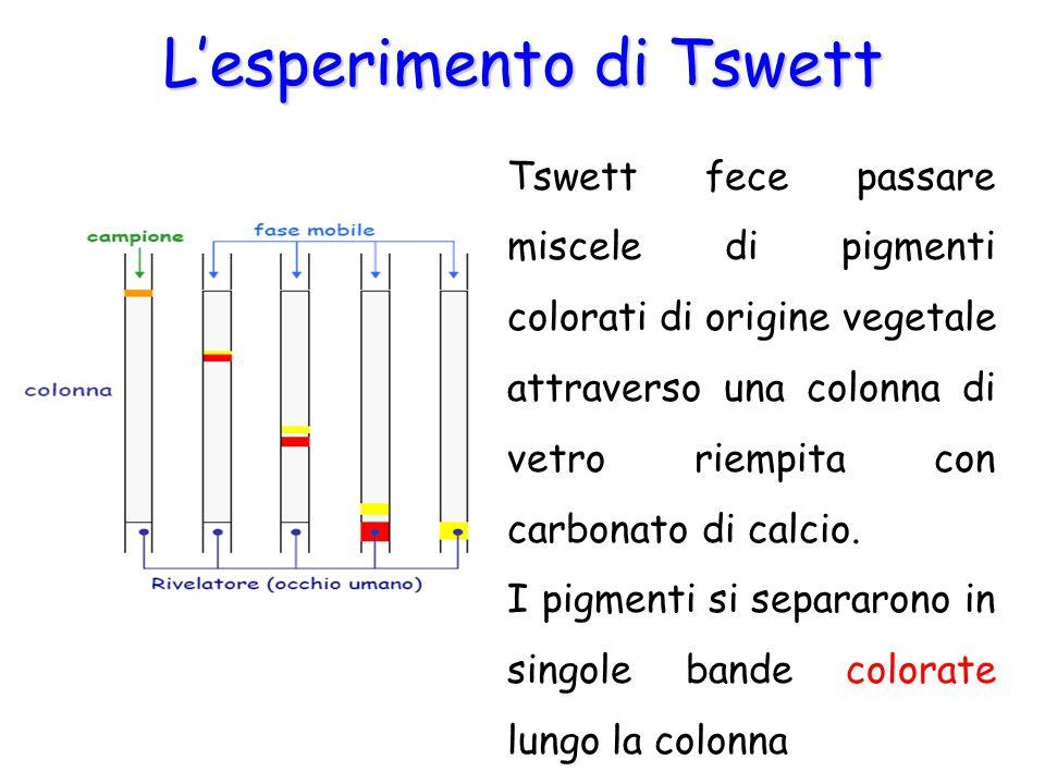 L'esperimento di Tswett Tswett fece passare miscele di pigmenti colorati di origine vegetale attraverso una colonna di vetro riempita con carbonato di