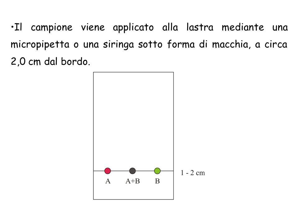 Il campione viene applicato alla lastra mediante una micropipetta o una siringa sotto forma di macchia, a circa 2,0 cm dal bordo.