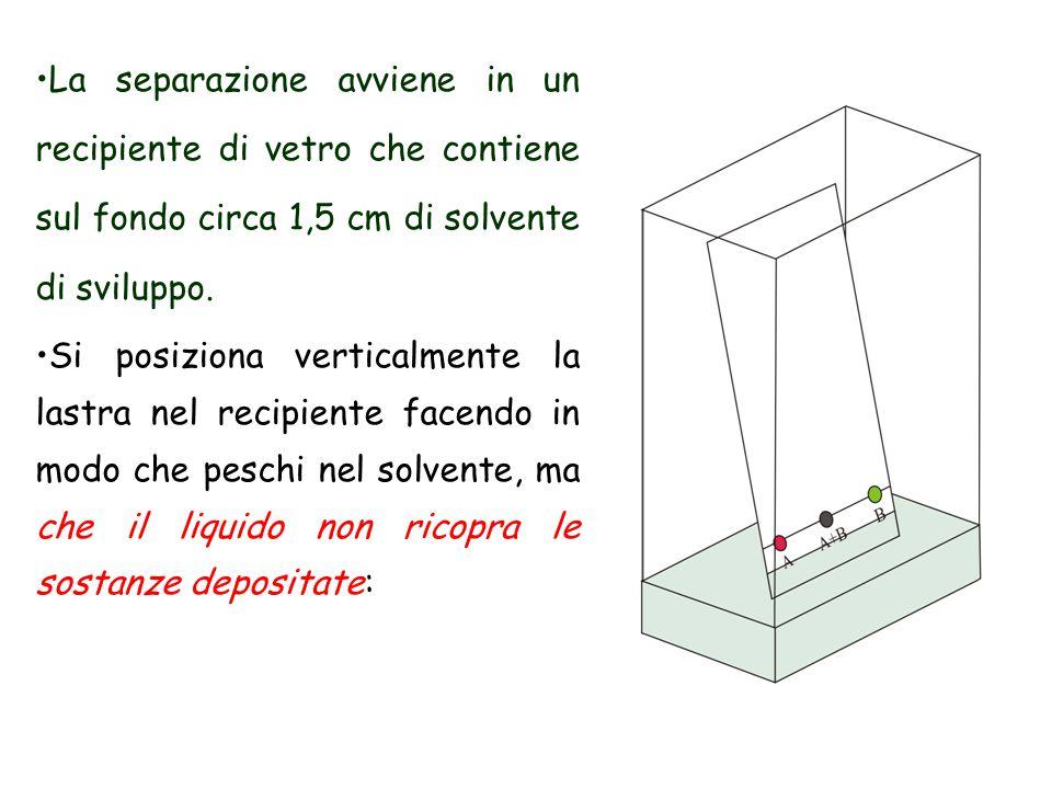 La separazione avviene in un recipiente di vetro che contiene sul fondo circa 1,5 cm di solvente di sviluppo. Si posiziona verticalmente la lastra nel