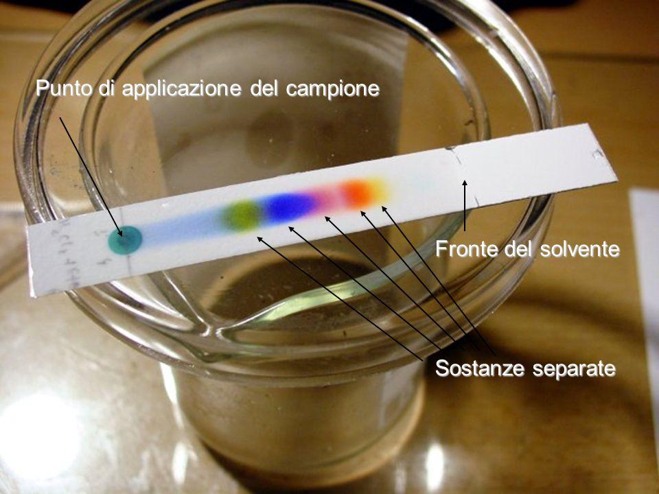 Punto di applicazione del campione Fronte del solvente Sostanze separate