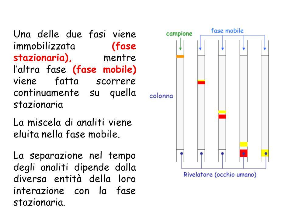 La miscela di analiti viene eluita nella fase mobile. Una delle due fasi viene immobilizzata (fase stazionaria), mentre l'altra fase (fase mobile) vie