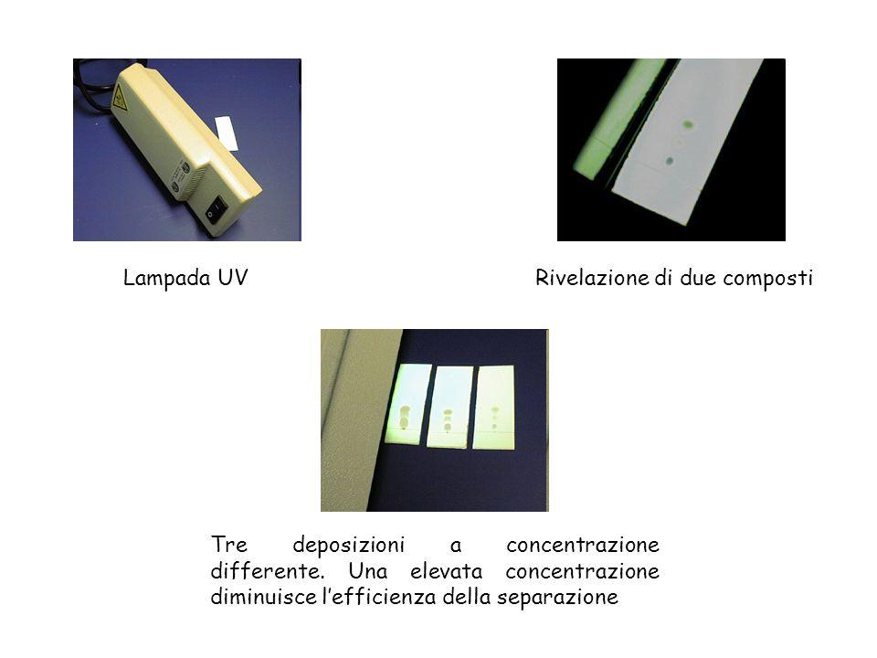 Lampada UVRivelazione di due composti Tre deposizioni a concentrazione differente. Una elevata concentrazione diminuisce l'efficienza della separazion