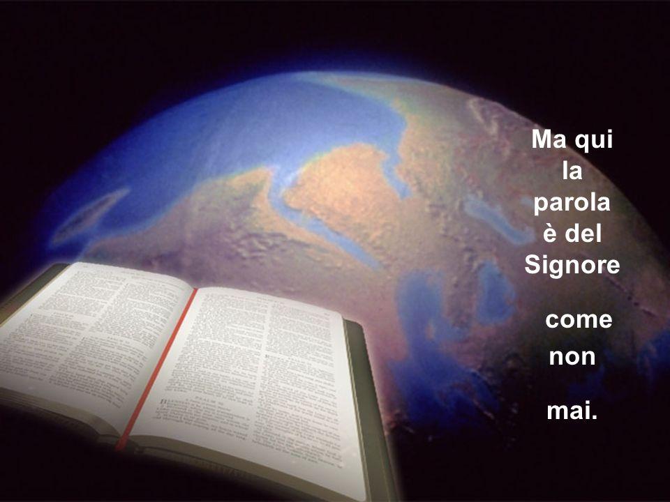 trasferita sulla carta dall' Evangelista Giovanni.