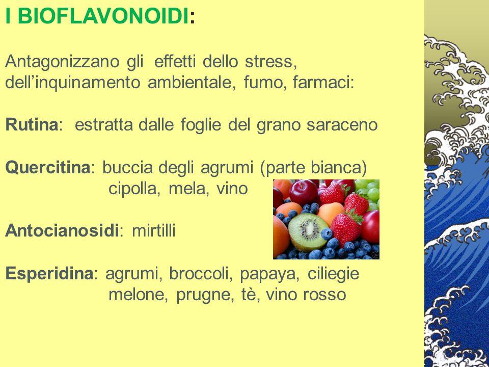 I BIOFLAVONOIDI: Antagonizzano gli effetti dello stress, dell'inquinamento ambientale, fumo, farmaci: Rutina: estratta dalle foglie del grano saraceno