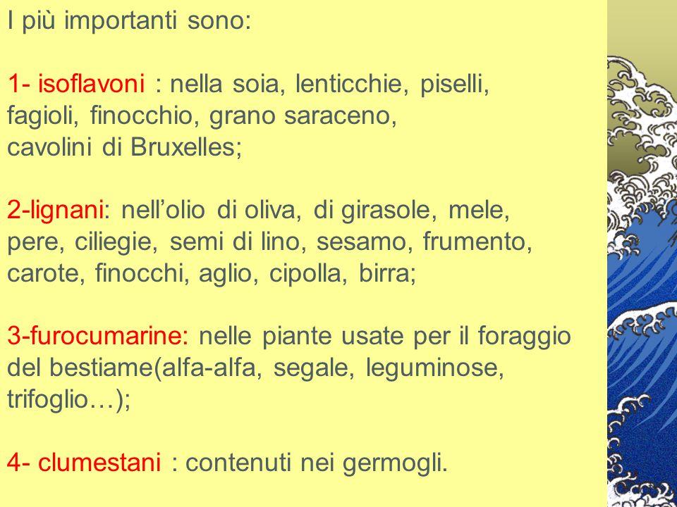 I più importanti sono: 1- isoflavoni : nella soia, lenticchie, piselli, fagioli, finocchio, grano saraceno, cavolini di Bruxelles; 2-lignani: nell'oli