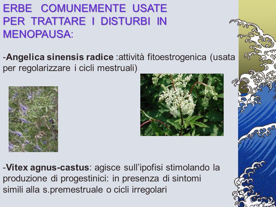 ERBE COMUNEMENTE USATE PER TRATTARE I DISTURBI IN MENOPAUSA MENOPAUSA: -Angelica sinensis radice :attività fitoestrogenica (usata per regolarizzare i