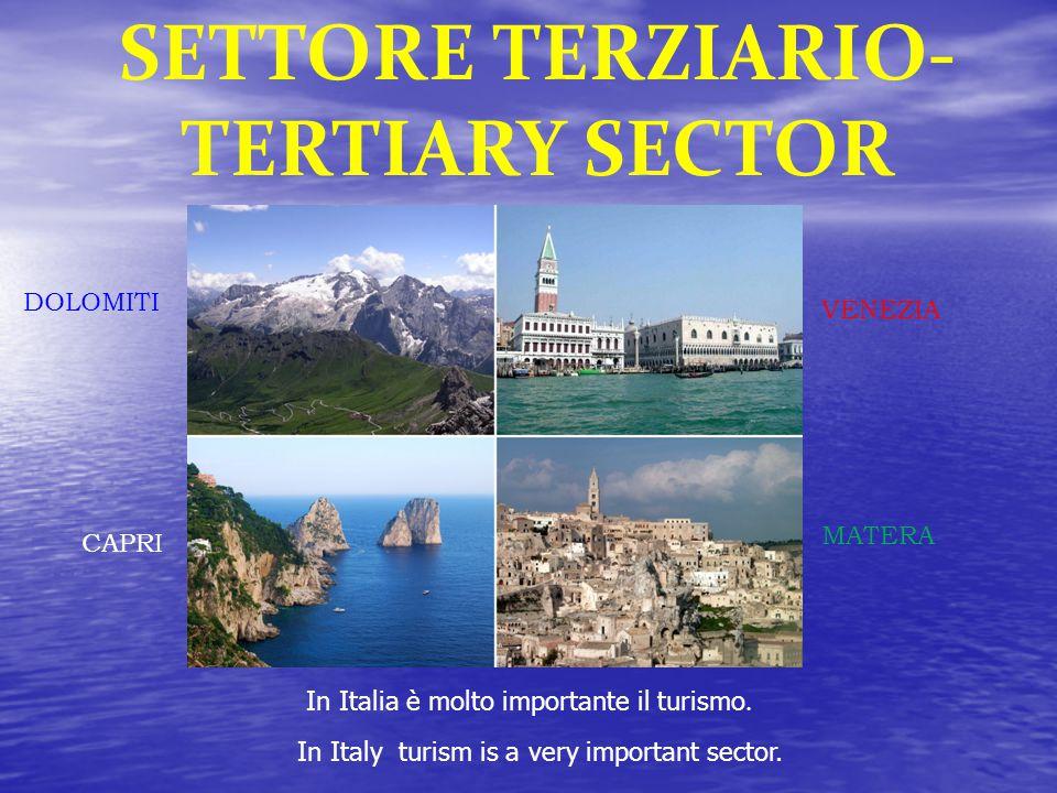 SETTORE TERZIARIO- TERTIARY SECTOR In Italia è molto importante il turismo.