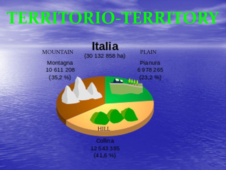 LA BANDIERA ITALIANA La bandiera tricolore è divisa in tre strisce verticali di uguale misura.