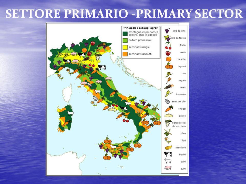 SETTORE PRIMARIO -PRIMARY SECTOR