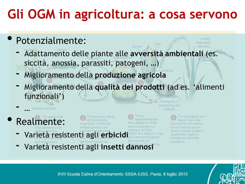 Gli OGM in agricoltura: a cosa servono XVII Scuola Estiva d'Orientamento SSSA-IUSS, Pavia, 8 luglio 2015 Potenzialmente: - Adattamento delle piante al