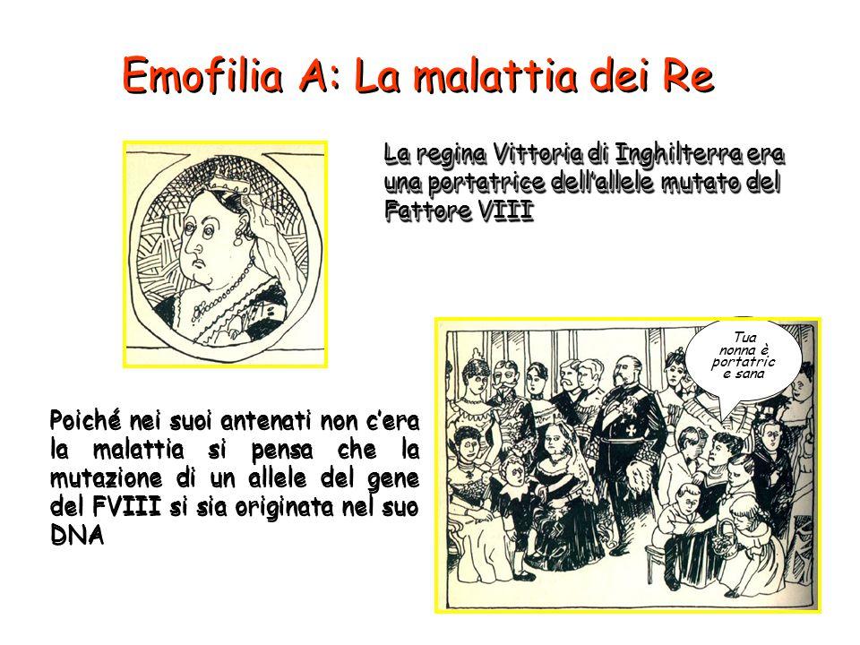 Emofilia A: La malattia dei Re La regina Vittoria di Inghilterra era una portatrice dell'allele mutato del Fattore VIII Poiché nei suoi antenati non c