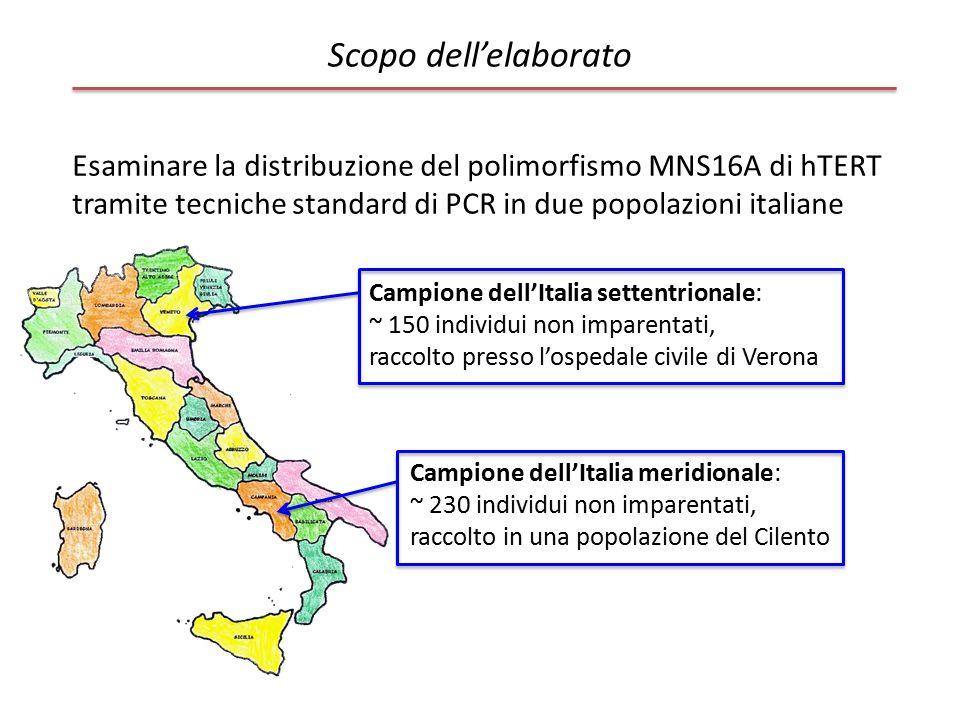 Scopo dell'elaborato Esaminare la distribuzione del polimorfismo MNS16A di hTERT tramite tecniche standard di PCR in due popolazioni italiane Campione