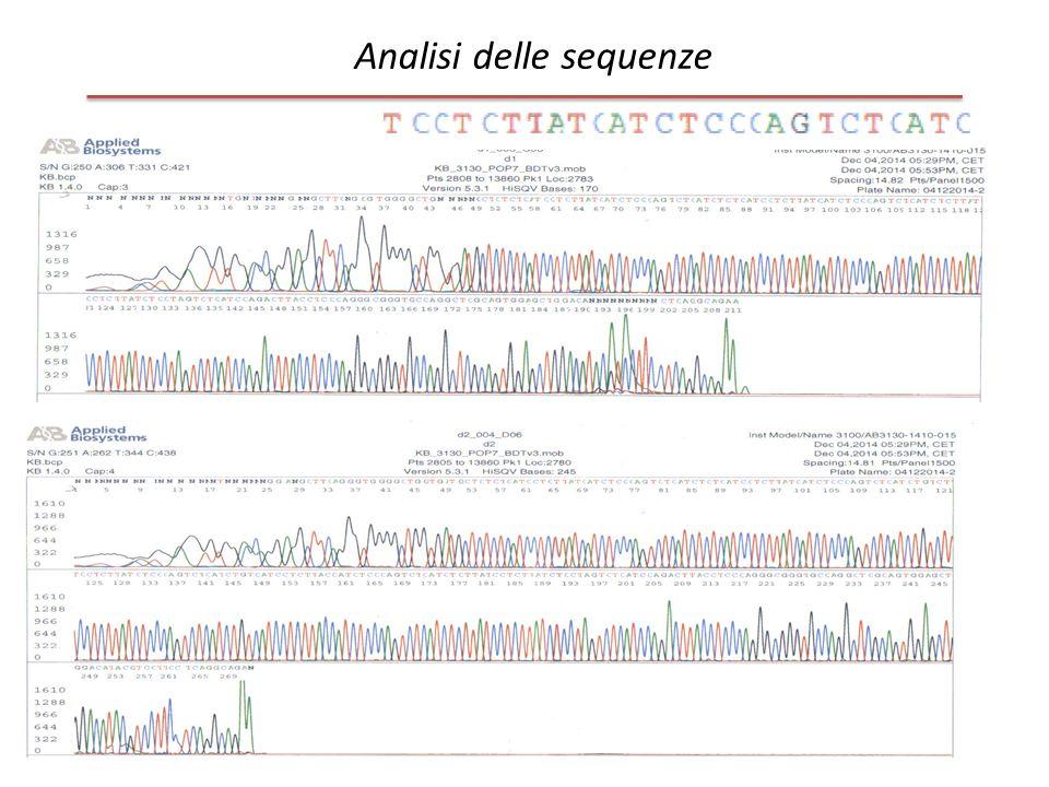 Analisi delle sequenze