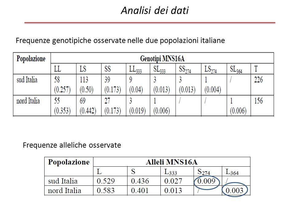 Analisi dei dati Frequenze genotipiche osservate nelle due popolazioni italiane Frequenze alleliche osservate
