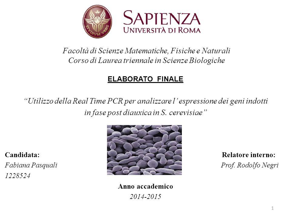 """ELABORATO FINALE """"Utilizzo della Real Time PCR per analizzare l' espressione dei geni indotti in fase post diauxica in S. cerevisiae"""" Candidata: Relat"""