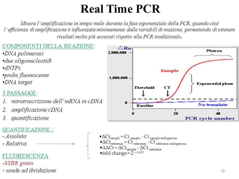 10 Real Time PCR Misura l' amplificazione in tempo reale durante la fase esponenziale della PCR, quando cioè l' efficienza di amplificazione è influen