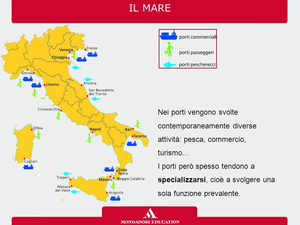 Nei porti vengono svolte contemporaneamente diverse attività: pesca, commercio, turismo...