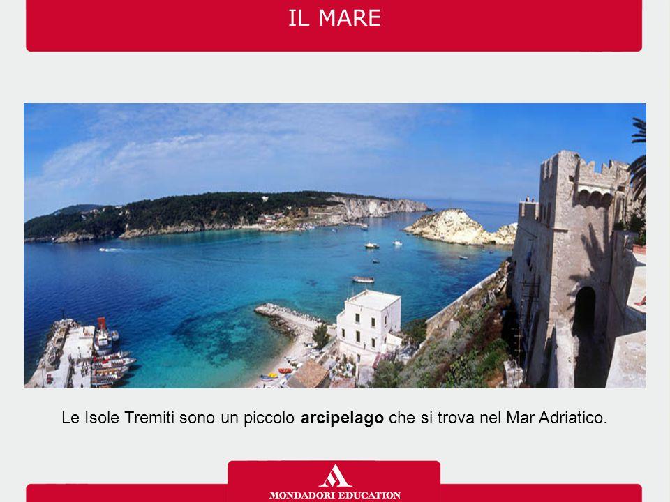 Le Isole Tremiti sono un piccolo arcipelago che si trova nel Mar Adriatico. IL MARE