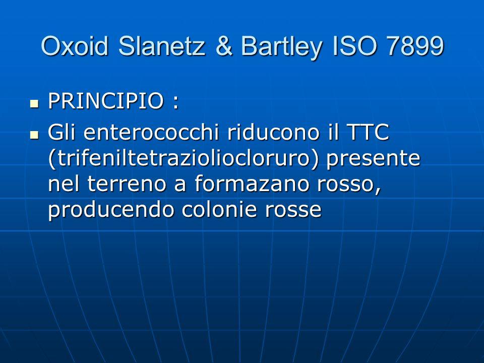 Oxoid Slanetz & Bartley ISO 7899 PRINCIPIO : PRINCIPIO : Gli enterococchi riducono il TTC (trifeniltetrazioliocloruro) presente nel terreno a formazan