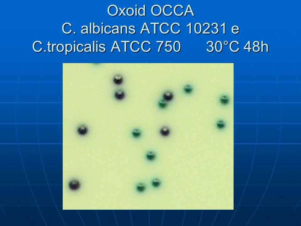 Oxoid OCCA C. albicans ATCC 10231 e C.tropicalis ATCC 750 30°C 48h
