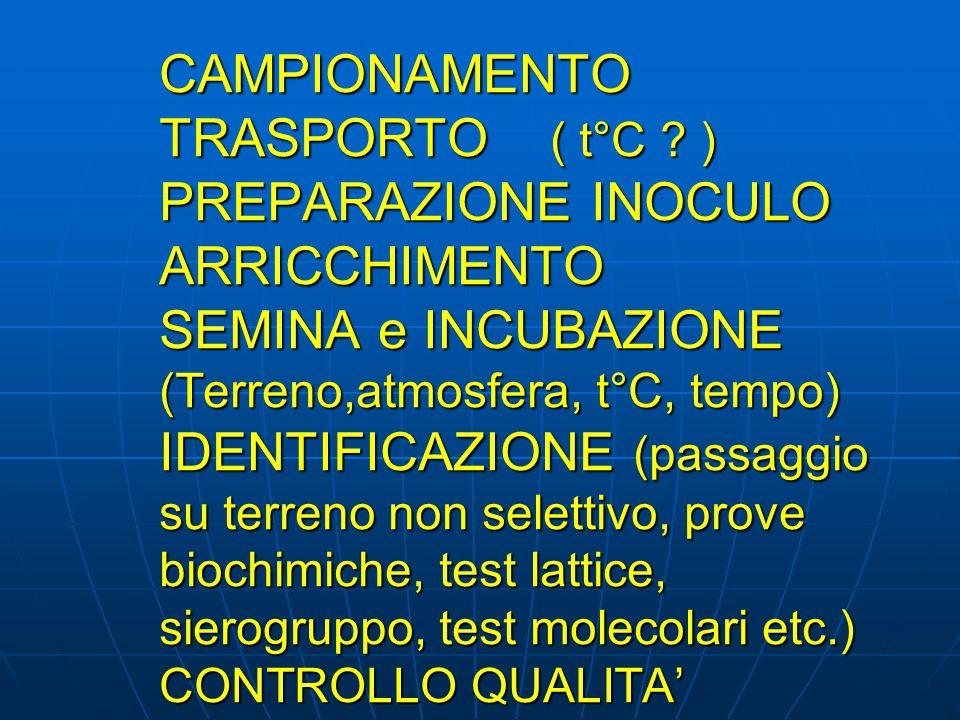 CAMPIONAMENTO TRASPORTO ( t°C ? ) PREPARAZIONE INOCULO ARRICCHIMENTO SEMINA e INCUBAZIONE (Terreno,atmosfera, t°C, tempo) IDENTIFICAZIONE (passaggio s