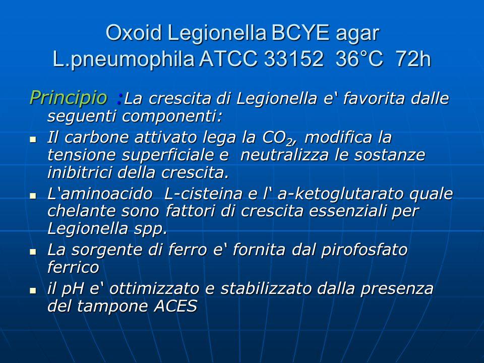 Oxoid Legionella BCYE agar L.pneumophila ATCC 33152 36°C 72h Principio : La crescita di Legionella e' favorita dalle seguenti componenti: Il carbone a