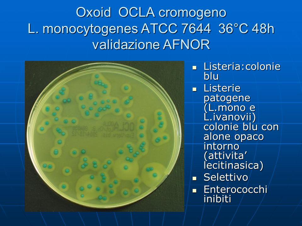Oxoid OCLA cromogeno L. monocytogenes ATCC 7644 36°C 48h validazione AFNOR Listeria:colonie blu Listeria:colonie blu Listerie patogene (L.mono e L.iva