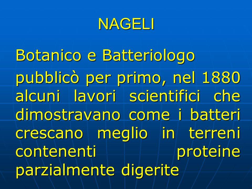 NAGELI Botanico e Batteriologo pubblicò per primo, nel 1880 alcuni lavori scientifici che dimostravano come i batteri crescano meglio in terreni conte