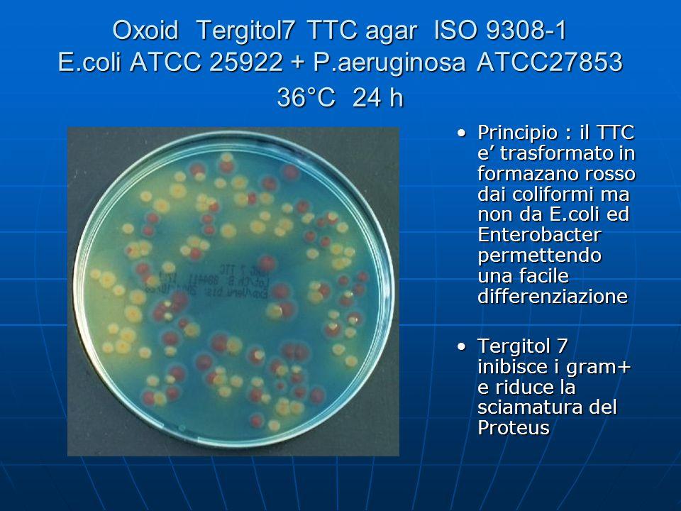 Oxoid Tergitol7 TTC agar ISO 9308-1 E.coli ATCC 25922 + P.aeruginosa ATCC27853 36°C 24 h Principio : il TTC e' trasformato in formazano rosso dai coli