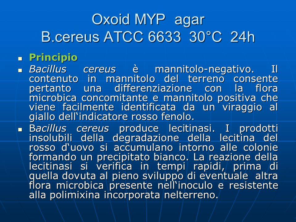Principio Principio Bacillus cereus è mannitolo-negativo. Il contenuto in mannitolo del terreno consente pertanto una differenziazione con la flora mi