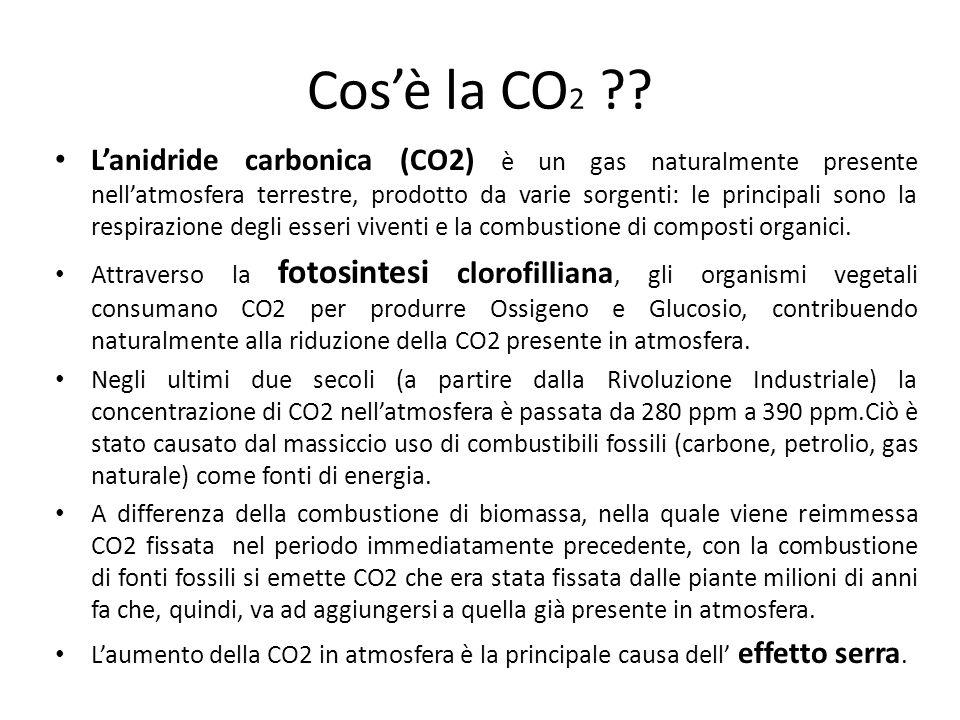 Cos'è la CO 2 .