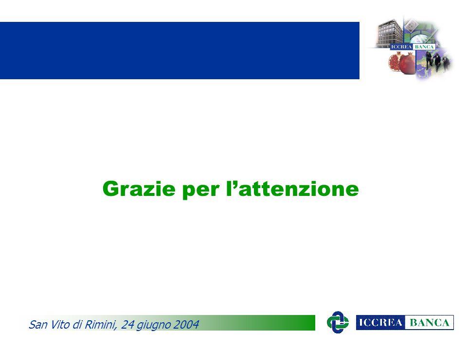 Grazie per l'attenzione San Vito di Rimini, 24 giugno 2004
