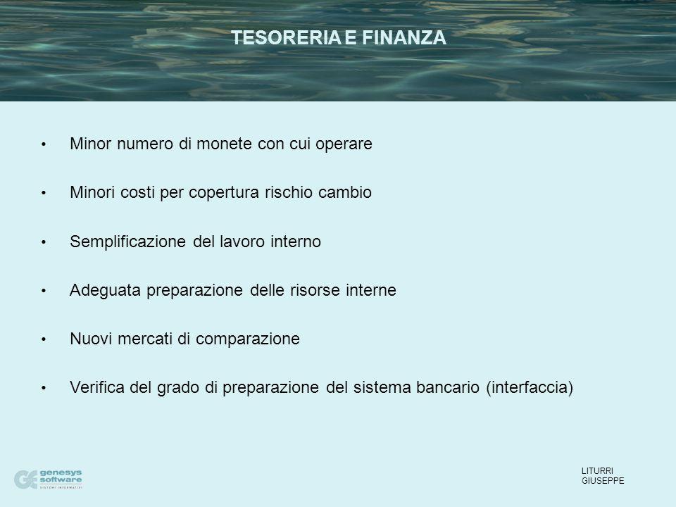 Minor numero di monete con cui operare Minori costi per copertura rischio cambio Semplificazione del lavoro interno Adeguata preparazione delle risors