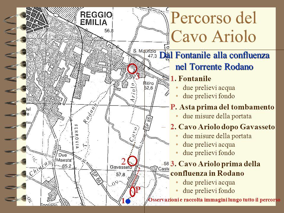 1 P 2 3 Percorso del Cavo Ariolo Dal Fontanile alla confluenza nel Torrente Rodano –1. Fontanile due prelievi acqua due prelievi fondo –P. Asta prima