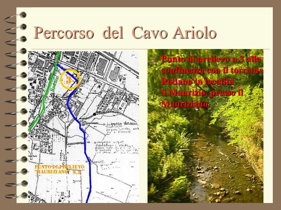 Percorso del Cavo Ariolo 4 Punto di prelievo n.3 alla confluenza con il torrente Rodano in località S.Maurizio, presso il Mauriziano.