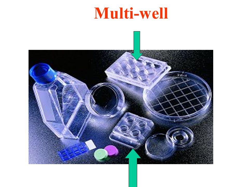 Multi-well