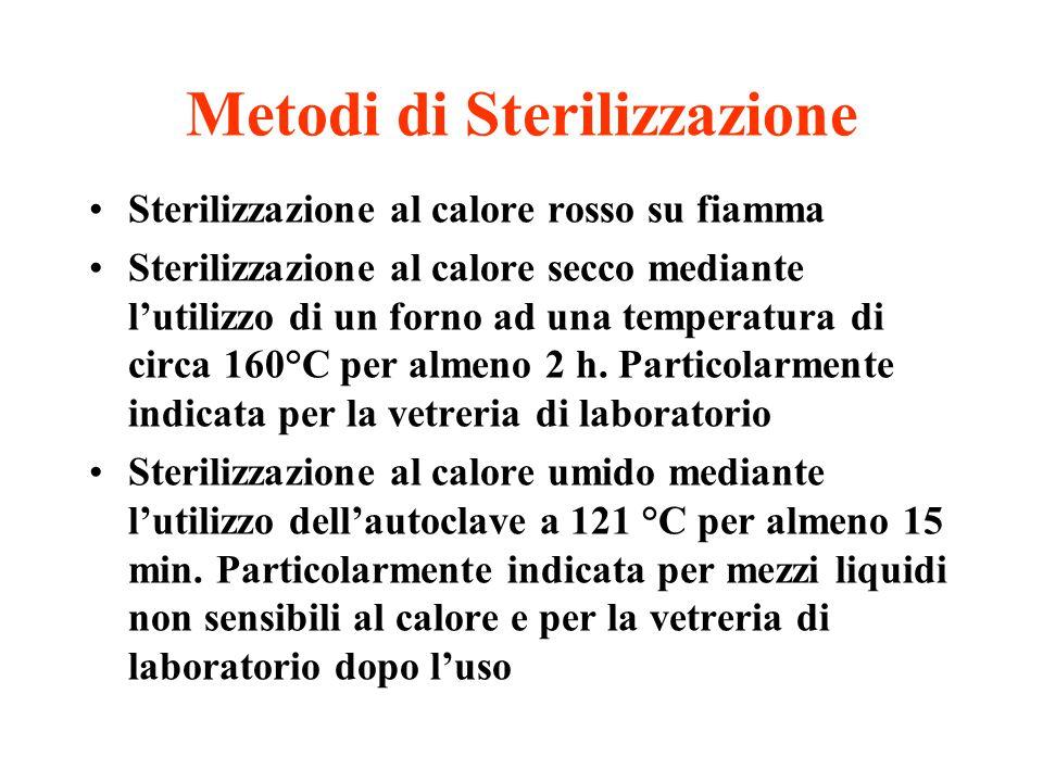 Metodi di Sterilizzazione Sterilizzazione al calore rosso su fiamma Sterilizzazione al calore secco mediante l'utilizzo di un forno ad una temperatura