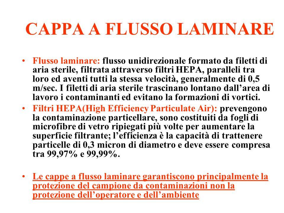 CAPPA A FLUSSO LAMINARE Flusso laminare: flusso unidirezionale formato da filetti di aria sterile, filtrata attraverso filtri HEPA, paralleli tra loro
