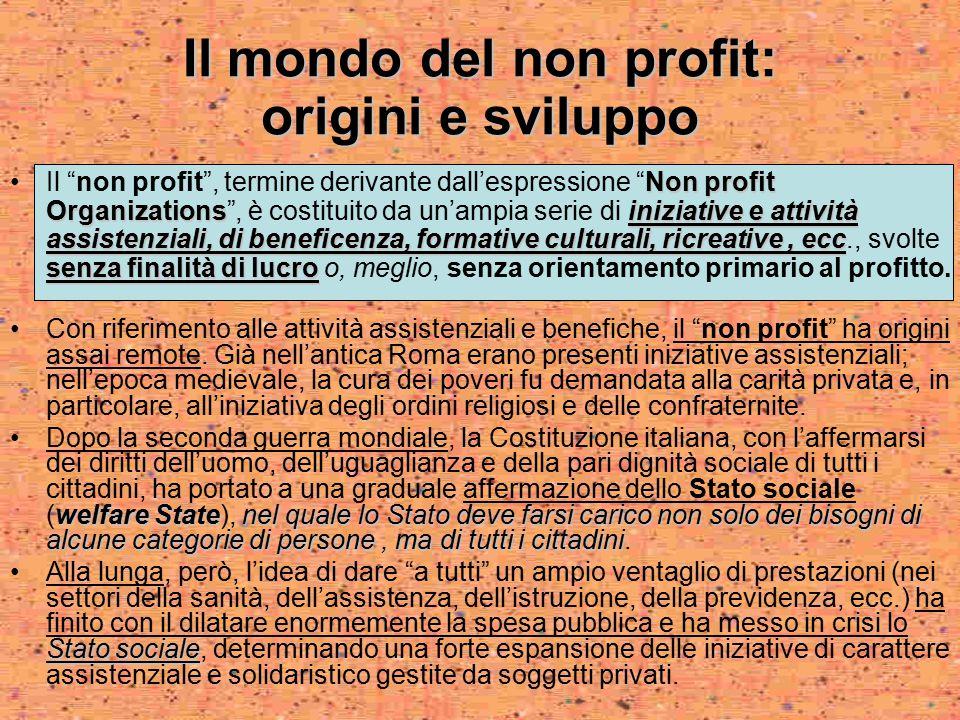 Il mondo del non profit: origini e sviluppo Non profit Organizationsiniziative e attività assistenziali, di beneficenza, formative culturali, ricreati
