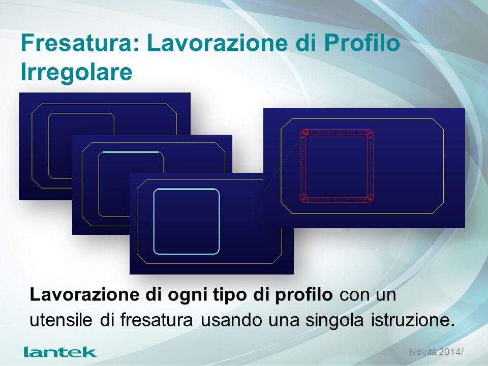 Fresatura: Lavorazione di Profilo Irregolare Lavorazione di ogni tipo di profilo con un utensile di fresatura usando una singola istruzione. Novità 20