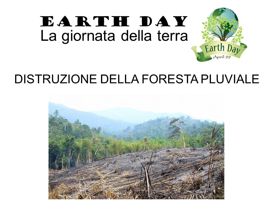 DISTRUZIONE DELLA FORESTA PLUVIALE EARTH DAY La giornata della terra