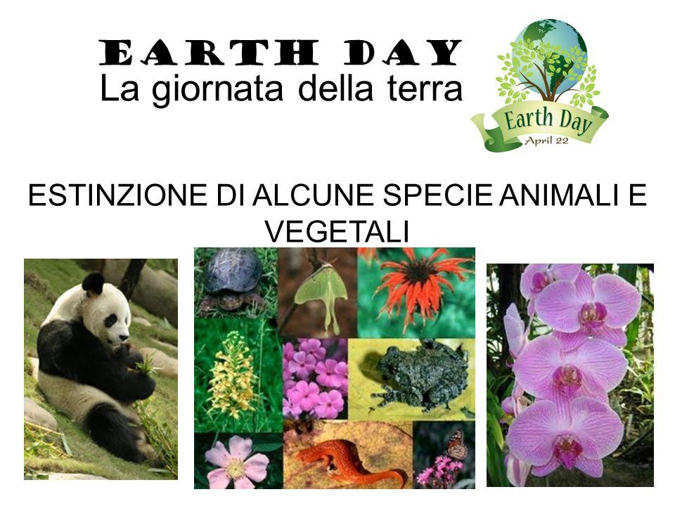 ESTINZIONE DI ALCUNE SPECIE ANIMALI E VEGETALI EARTH DAY La giornata della terra