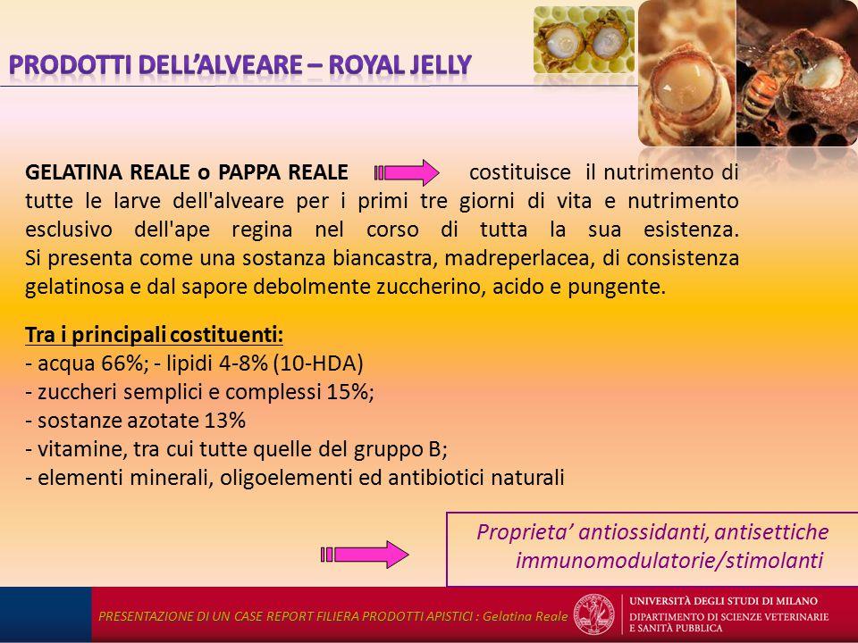 GELATINA REALE o PAPPA REALE costituisce il nutrimento di tutte le larve dell alveare per i primi tre giorni di vita e nutrimento esclusivo dell ape regina nel corso di tutta la sua esistenza.
