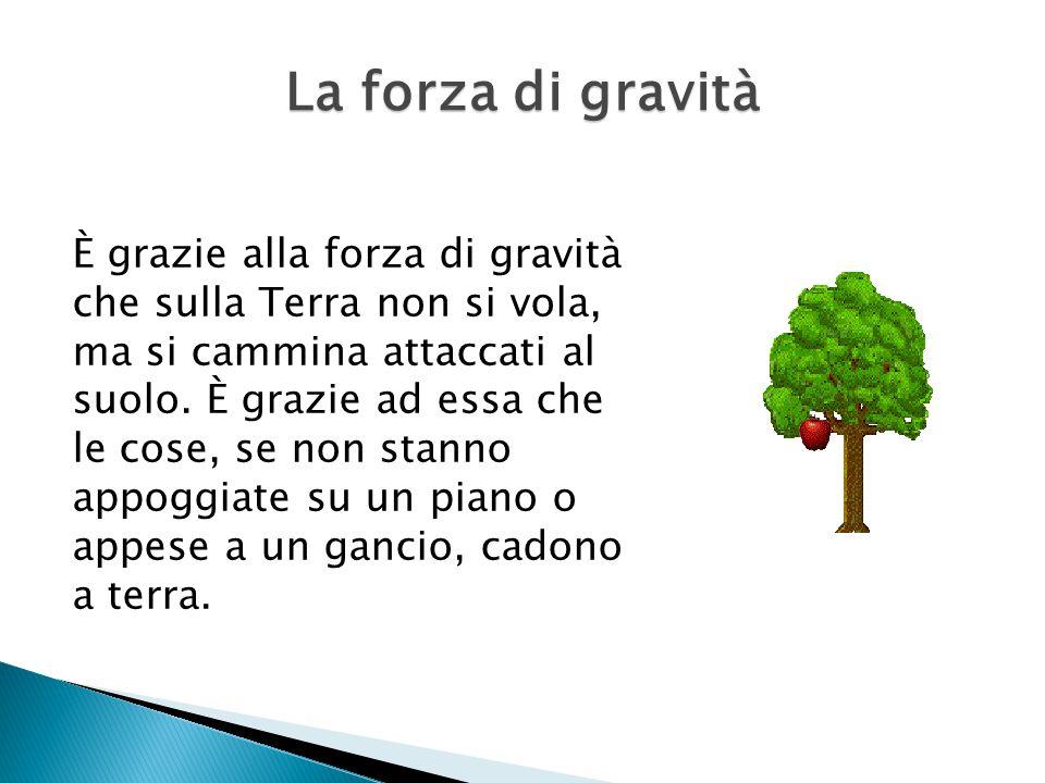 È grazie alla forza di gravità che sulla Terra non si vola, ma si cammina attaccati al suolo.