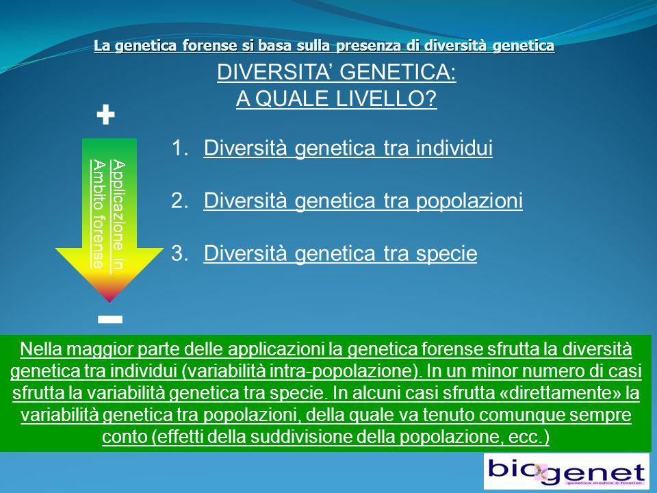 La genetica forense si basa sulla presenza di diversità genetica DIVERSITA' GENETICA: A QUALE LIVELLO.