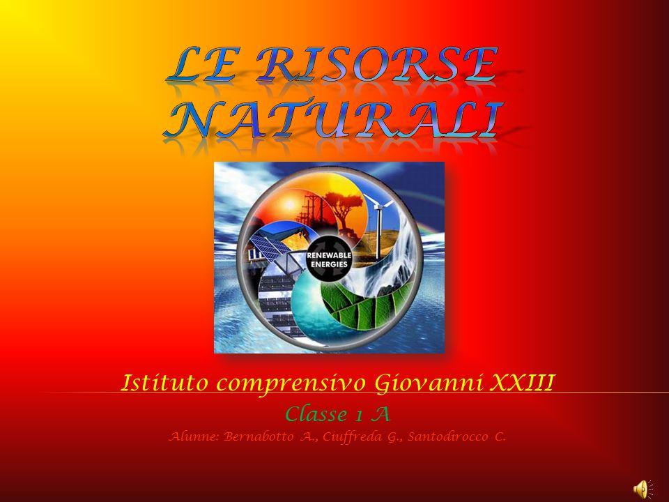 Istituto comprensivo Giovanni XXIII Classe 1 A Alunne: Bernabotto A., Ciuffreda G., Santodirocco C.