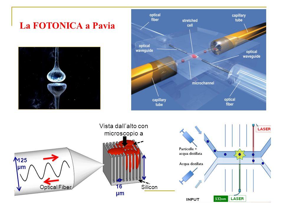 La FOTONICA a Pavia Vista dall'alto con microscopio a fluorescenza Optical Fiber 125 μm 16 μm Silicon